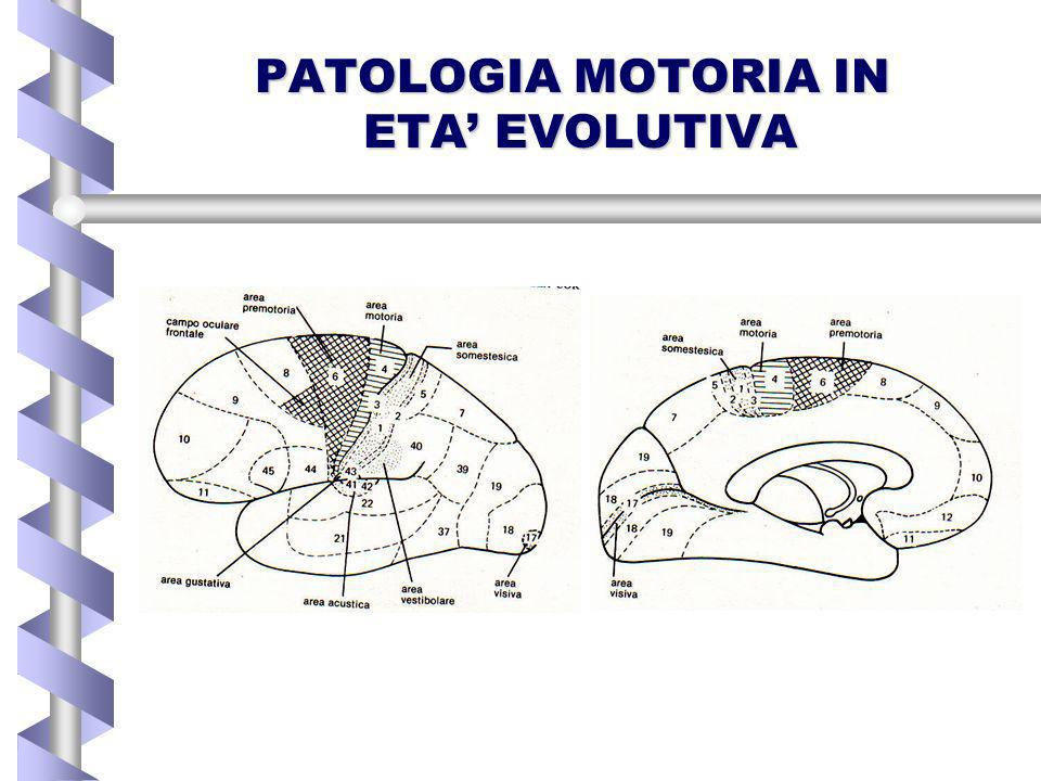 PATOLOGIA MOTORIA IN ETA' EVOLUTIVA