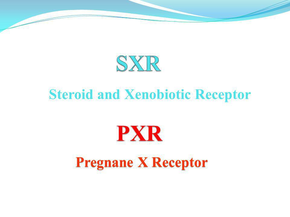 Steroid and Xenobiotic Receptor