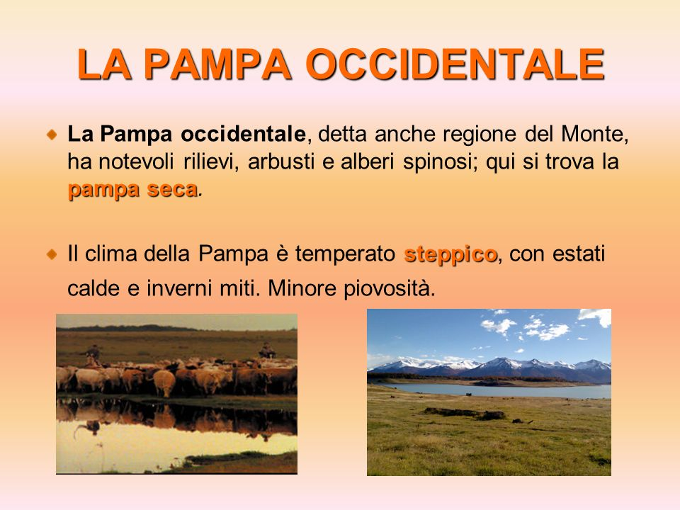 LA PAMPA OCCIDENTALE La Pampa occidentale, detta anche regione del Monte, ha notevoli rilievi, arbusti e alberi spinosi; qui si trova la pampa seca.