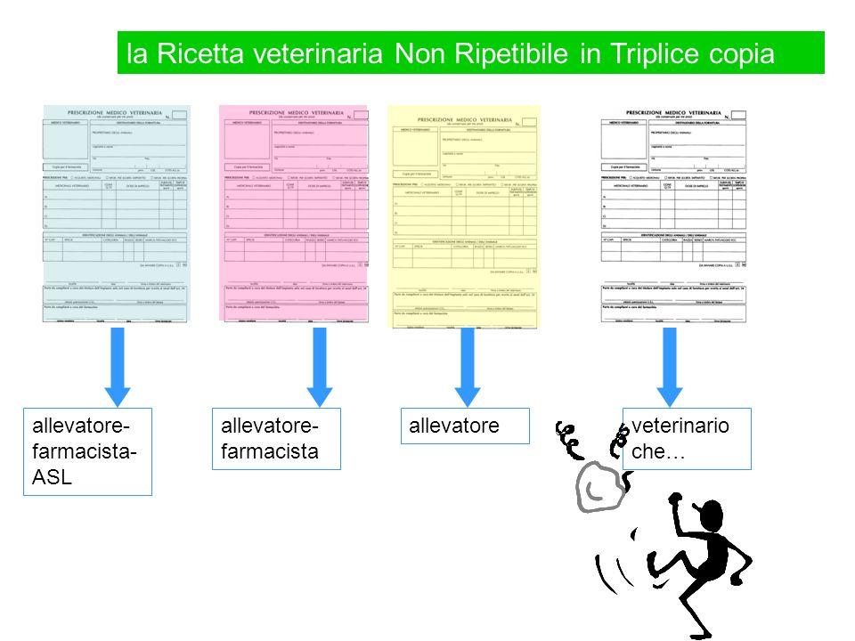 Ricetta Veterinaria Ripetibile Durata.La Ricetta Medico Veterinaria Ppt Video Online Scaricare