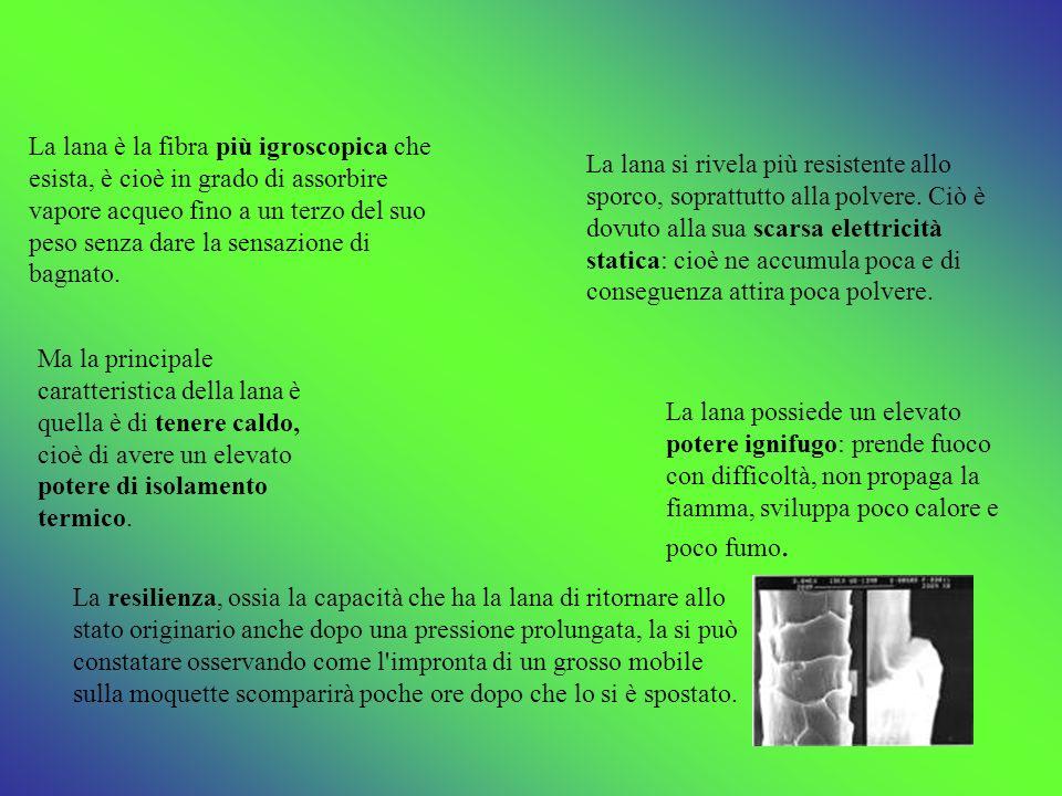 FIBRE TESSILI DEFINIZIONE - ppt video online scaricare