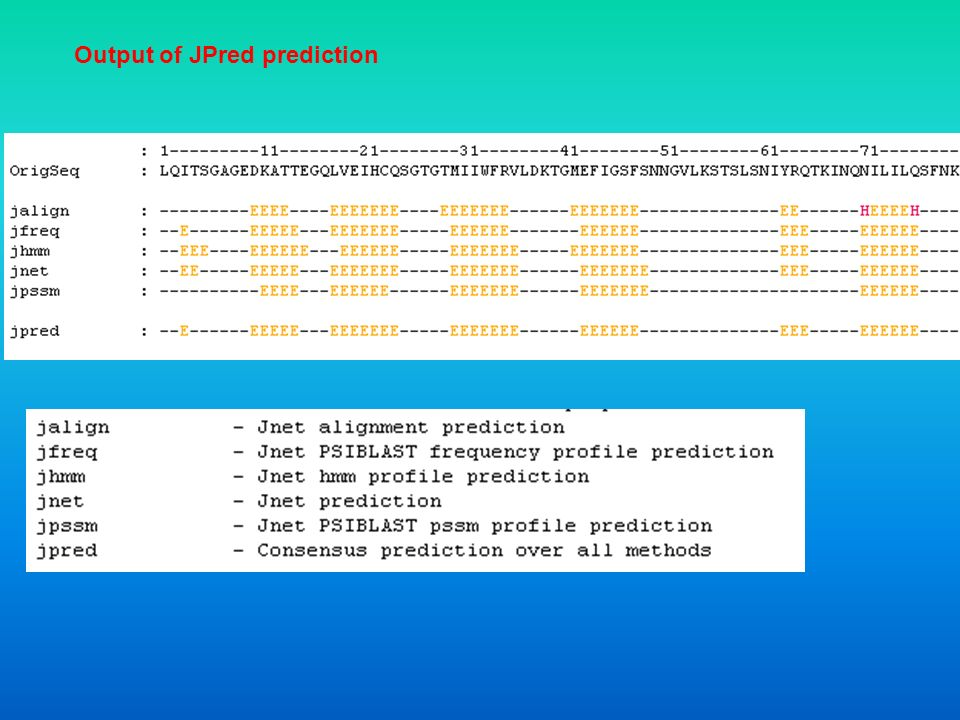 Output of JPred prediction