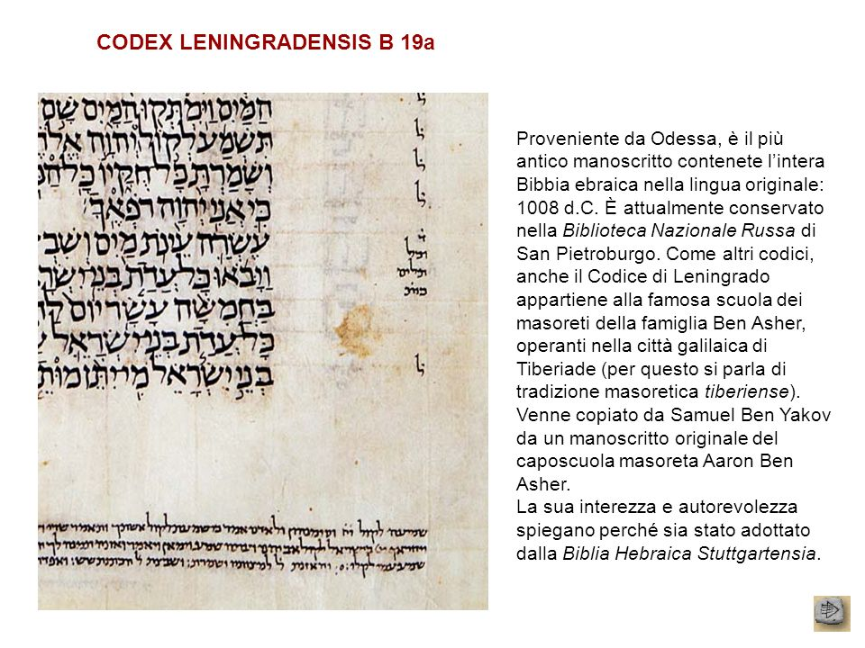 CODEX LENINGRADENSIS B 19a