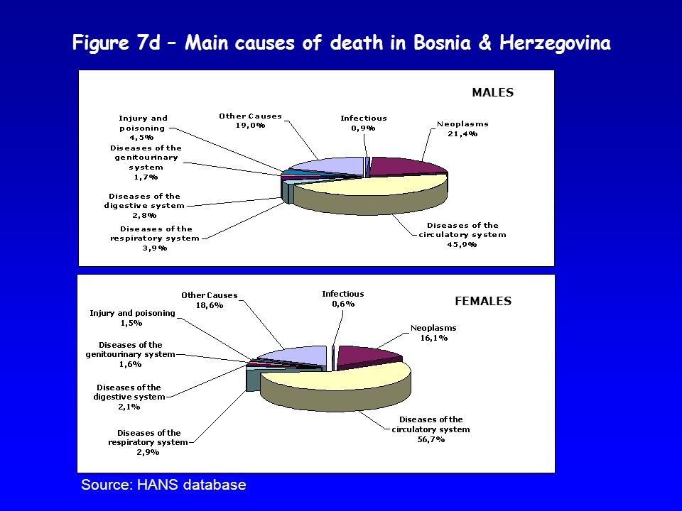 Figure 7d – Main causes of death in Bosnia & Herzegovina