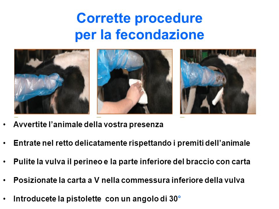 Corrette procedure per la fecondazione