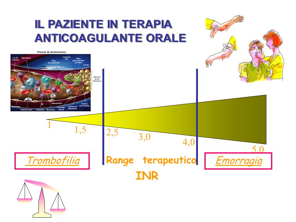 IL PAZIENTE IN TERAPIA ANTICOAGULANTE ORALE