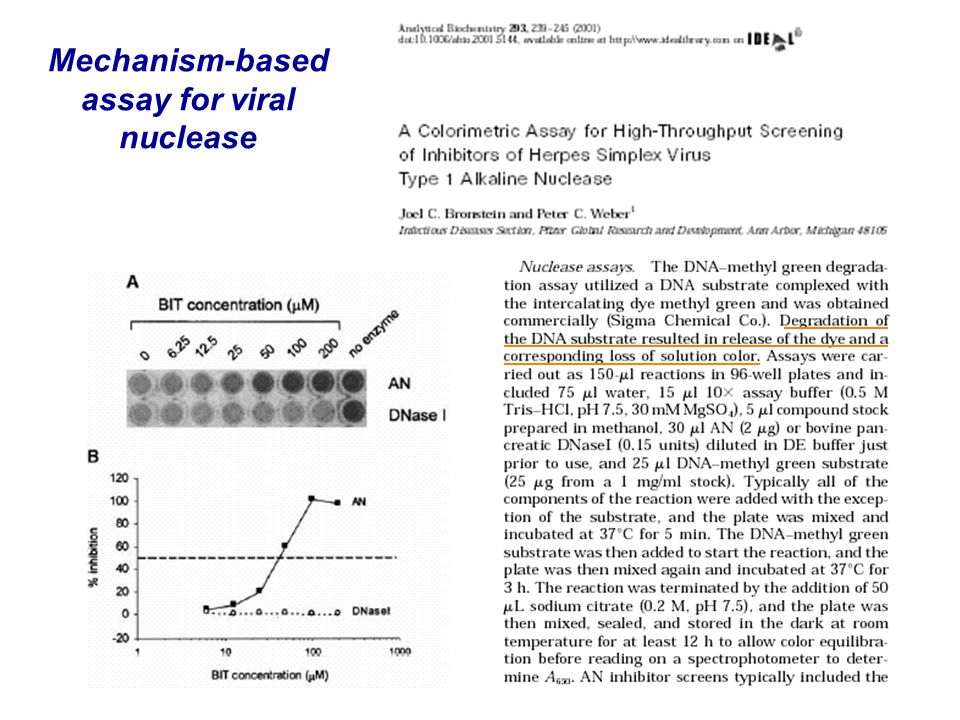 Mechanism-based assay for viral nuclease