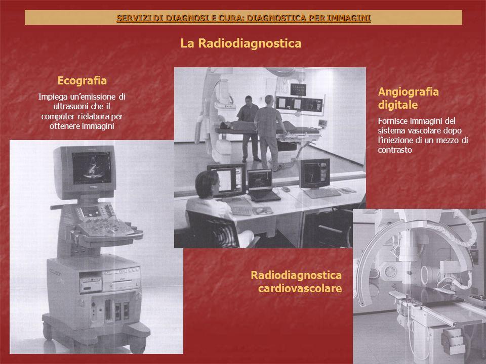 Servizi di diagnosi e cura diagnostica per immagini ppt scaricare