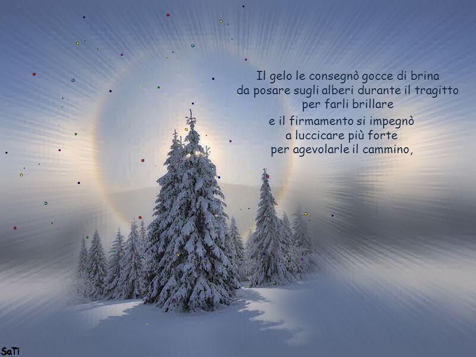 Canzone Di Natale Stella Cometa Testo.La Piccola Stella Pensando Alla Stella Cometa Ho Inventato Una