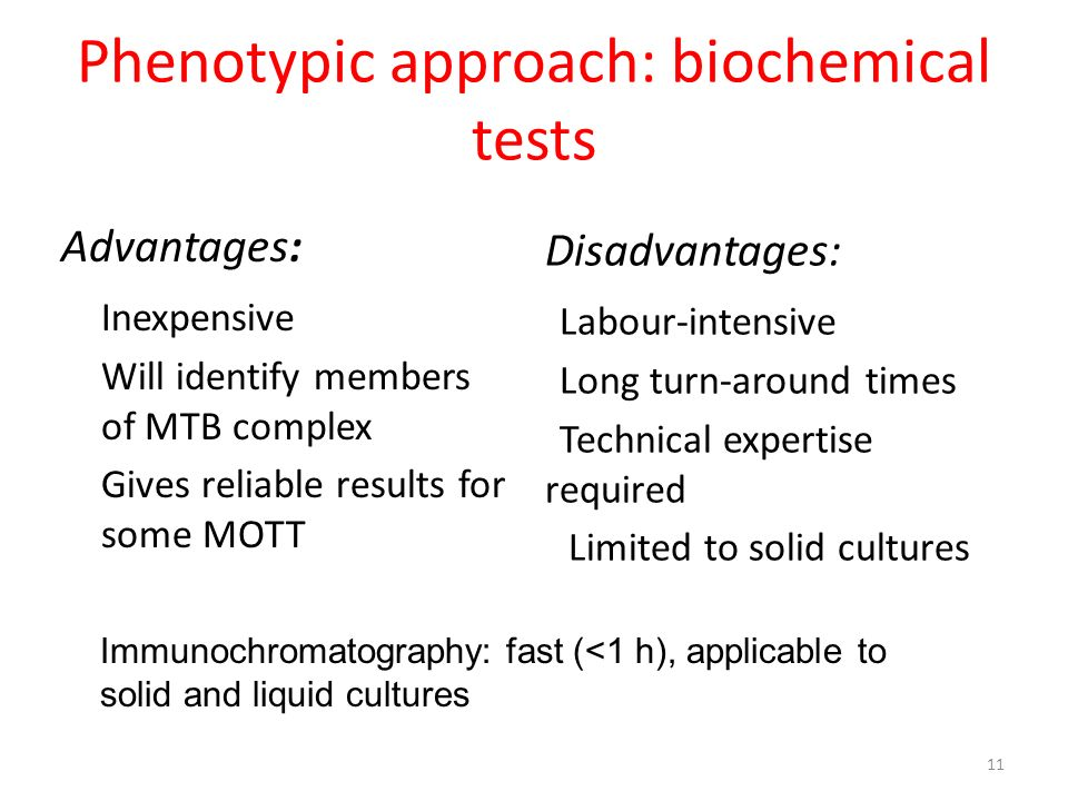 Phenotypic approach: biochemical tests