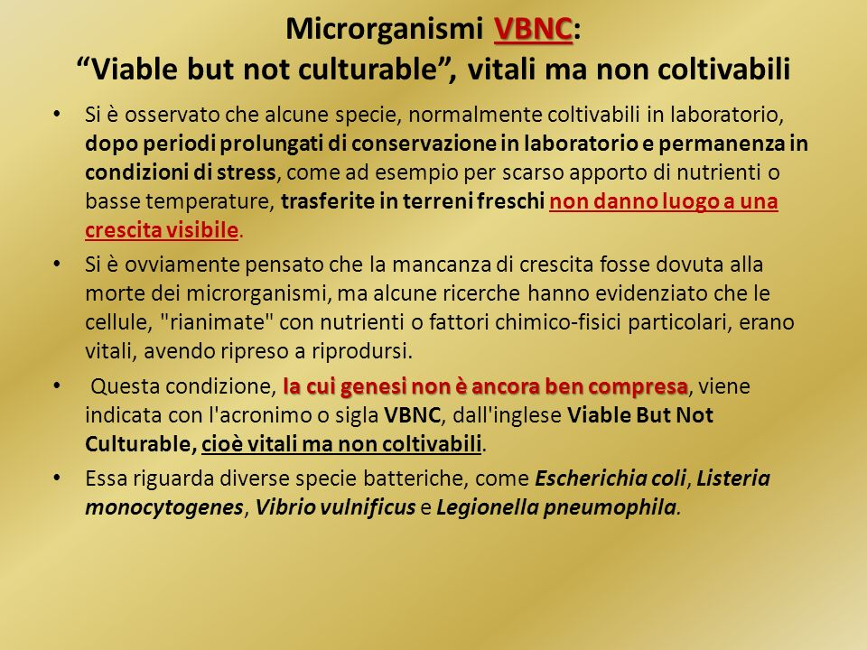 Microrganismi VBNC: Viable but not culturable , vitali ma non coltivabili