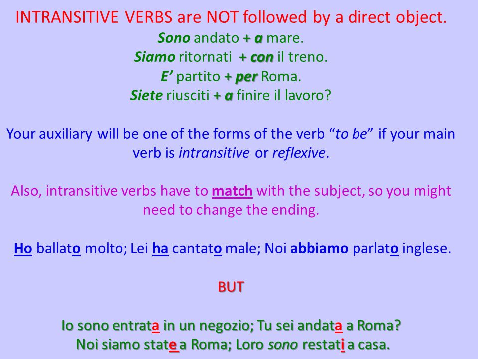 INTRANSITIVE VERBS are NOT followed by a direct object.