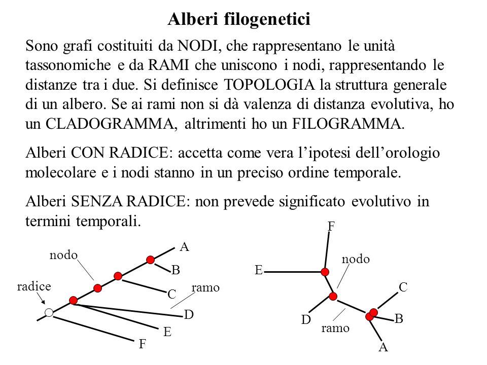 Datazione alberi filogenetici