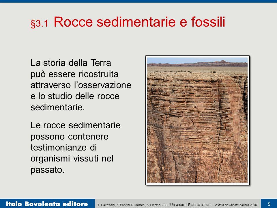 Perché la datazione al radiocarbonio può essere usata per stimare letà delle rocce