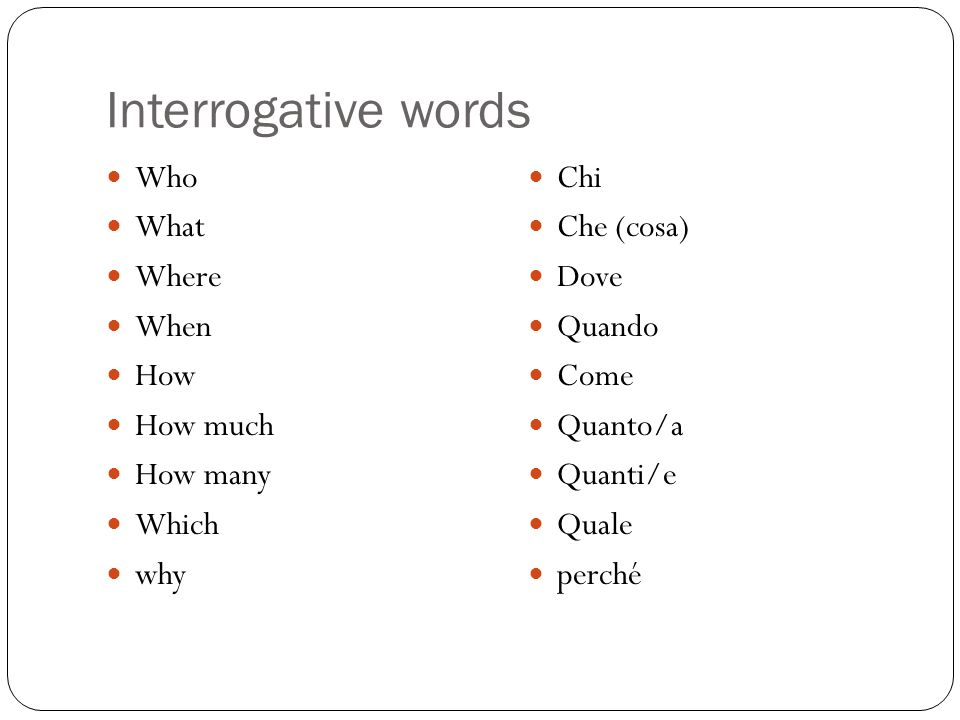 Interrogative words Who What Where When How How much How many Which