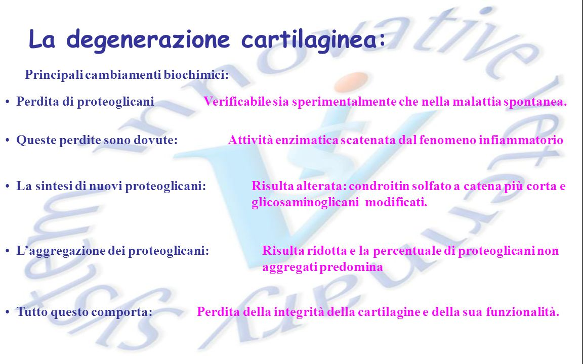 La degenerazione cartilaginea: